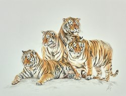 Designer Family Study Sketch by Hayley Goodhead - Original Drawing on Mounted Paper sized 15x12 inches. Available from Whitewall Galleries